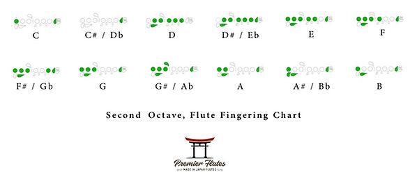 Second Octave.jpg
