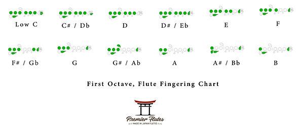 First Octave.jpg