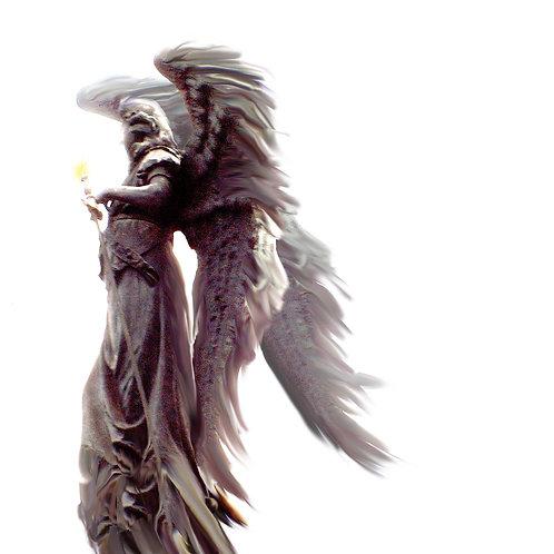 Engel 40