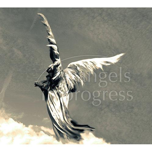"""Engel Nr. 12 """"Freiheit, geh Deinen Weg""""_platin"""
