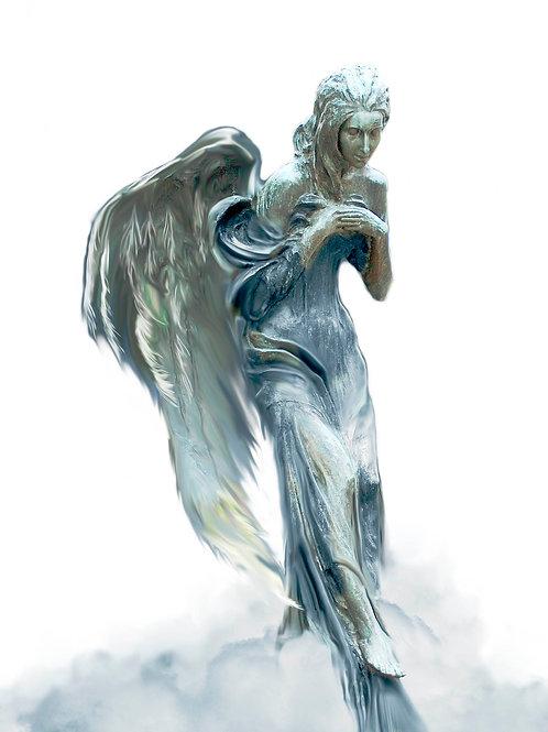 Engel 16