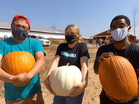 Pumpkin Carving Contest Featuring The Crew! Vote Now for your favorite!