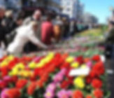 imagesSP8QTU2J.jpg