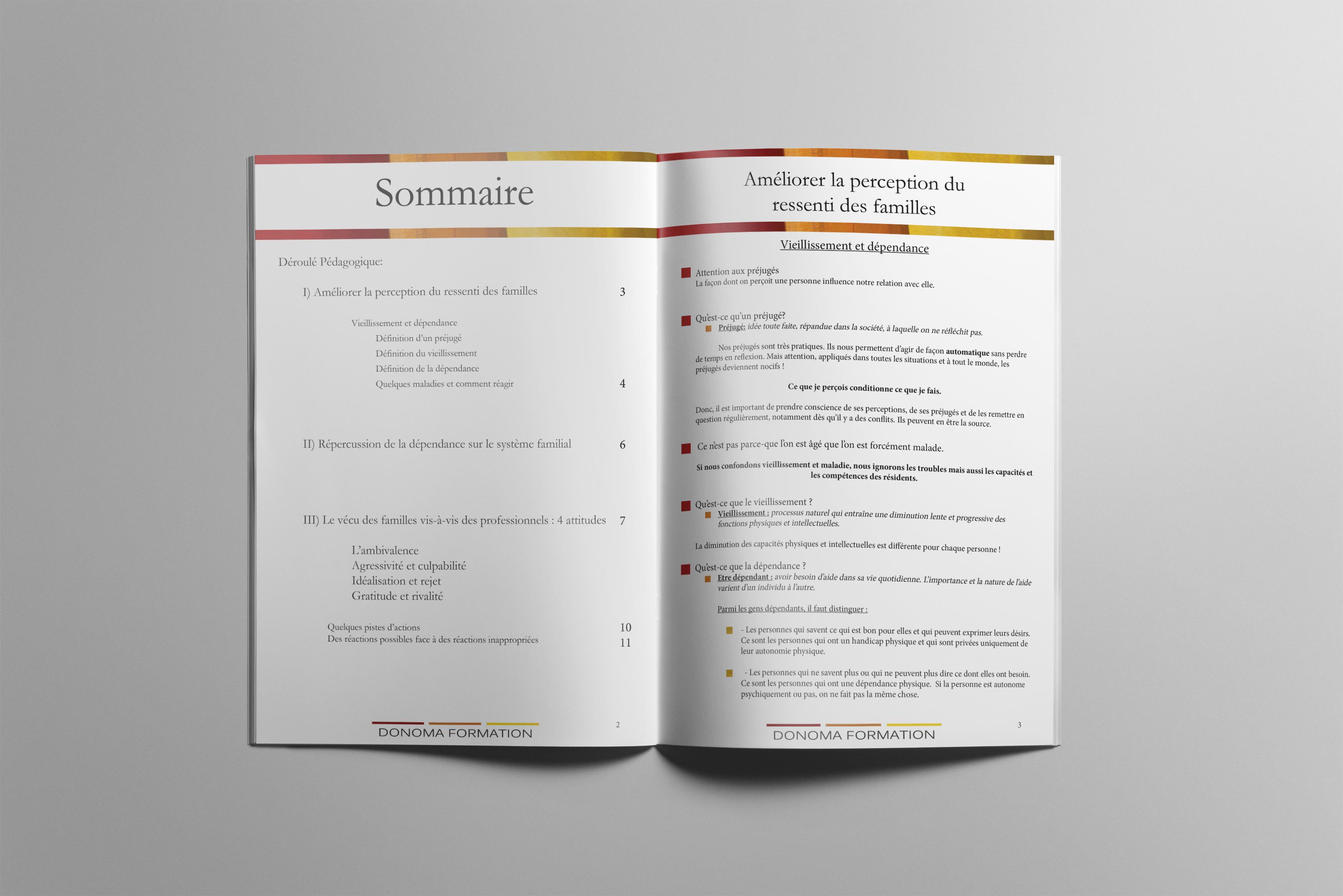 Brochure Donoma Formation