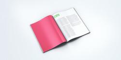 Magazine Standart 03
