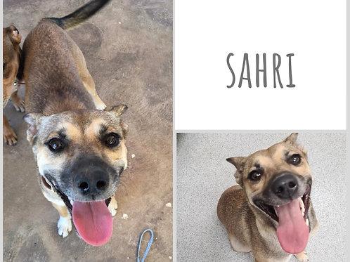Sahri