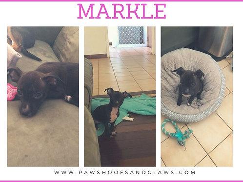 Markle