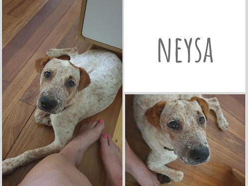 Neysa