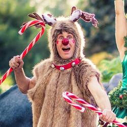 Reindeer Antlers and Ears