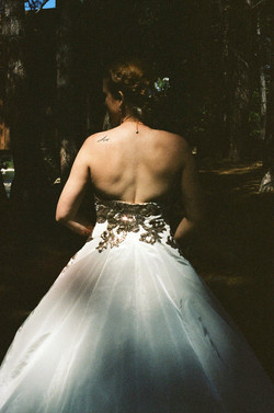 Yosemite's June Bride