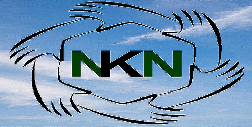 NKN final logo_try8.png