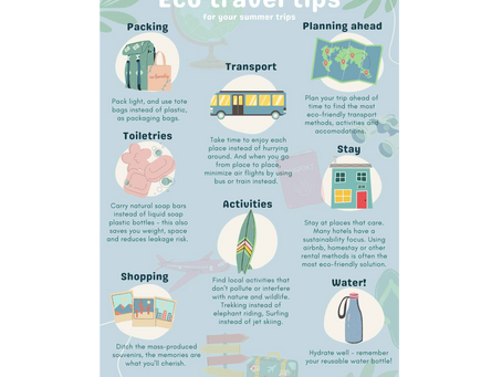 Eco travel tips: for your summer trips