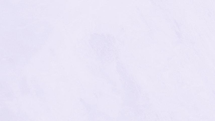 White%252520Background_edited_edited_edi