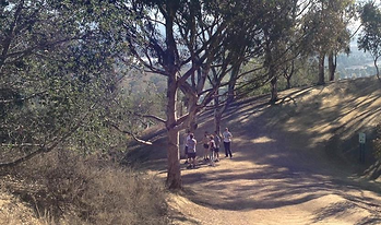 Group Hike - Be Healthy