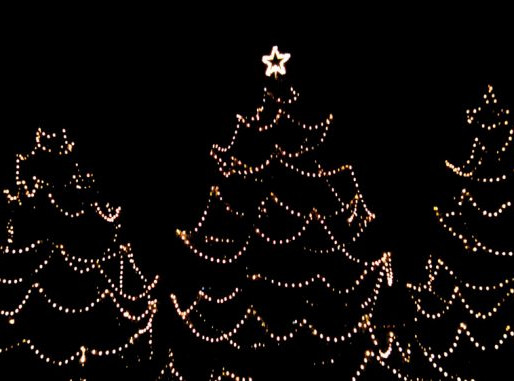 Fauquier Hospital Auxiliary, Inc. 2019 LIGHTS FOR LIFE Celebration