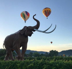 Mammoth Site launch