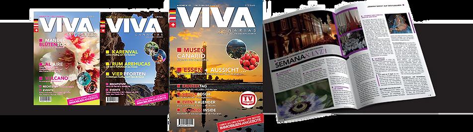 VIVA_Covers_Streifen.png