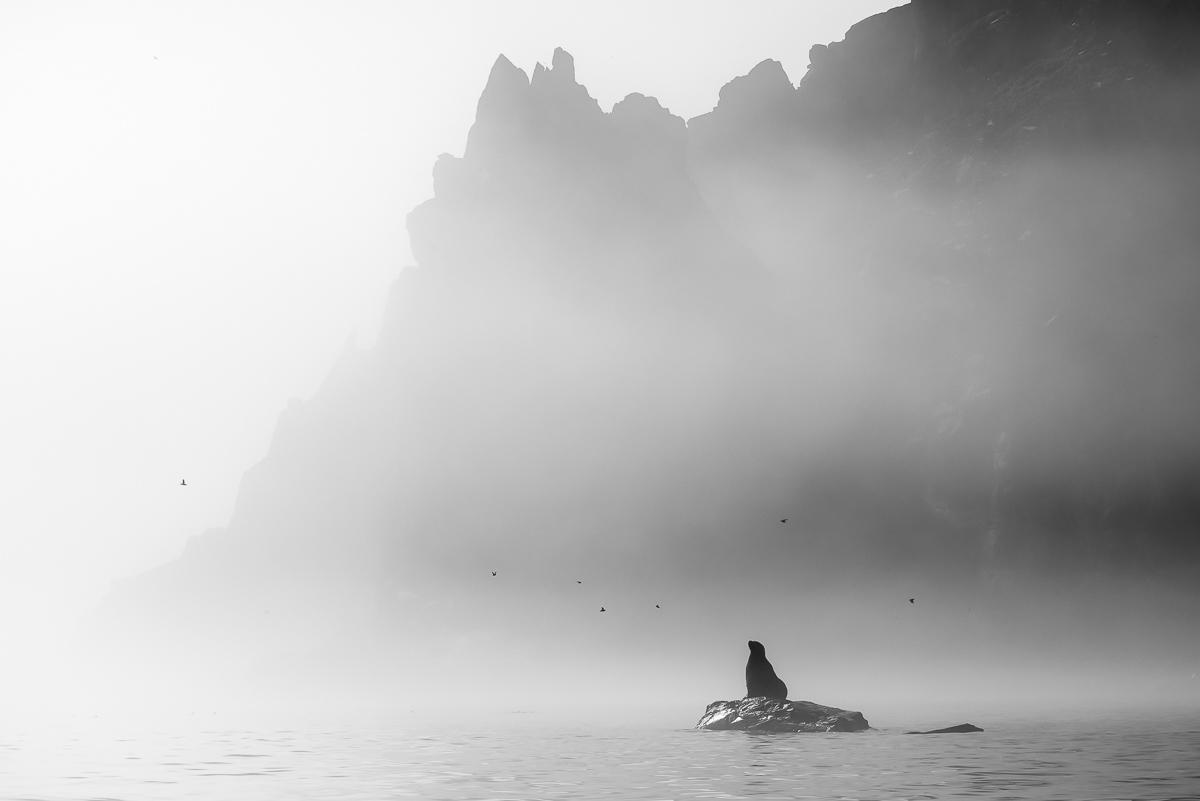 Охотское море - Ямские острова (9)
