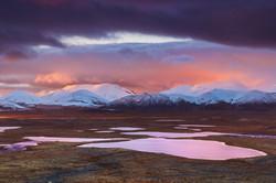 13. Reflections of tundra