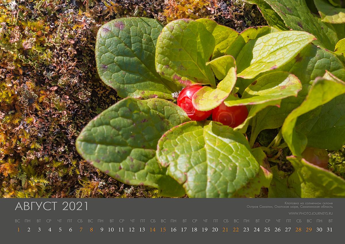 Календарь 2021-9_1200