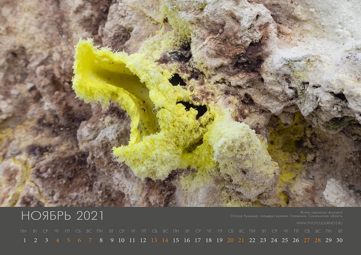 Календарь 2021-12_1200