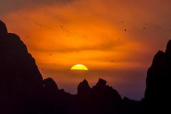 Охотское море - Ямские острова (5)