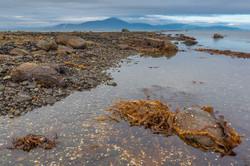 Охотское море - полуостров Кони (5)