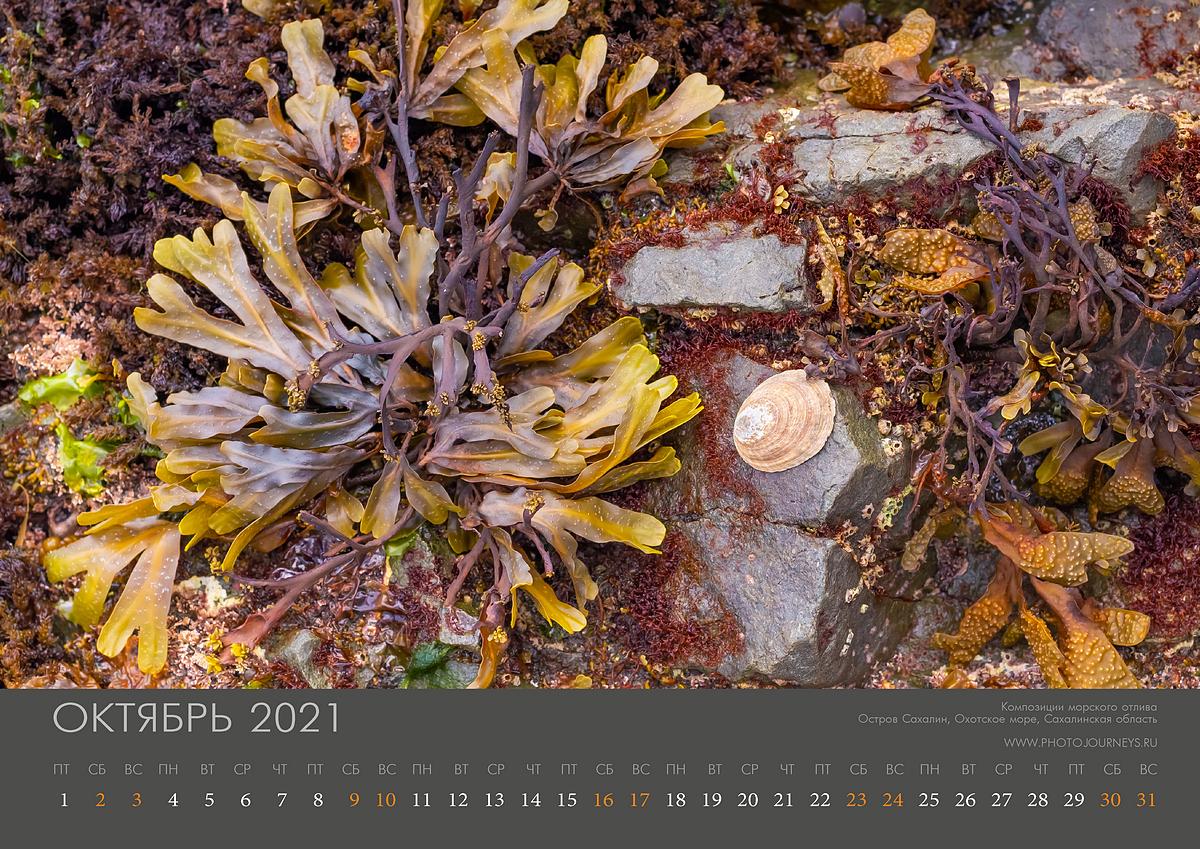 Календарь 2021-11_1200