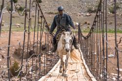 Киргизский ковбой