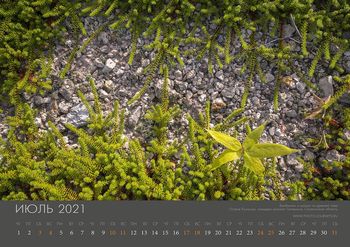 Календарь 2021-8_1200