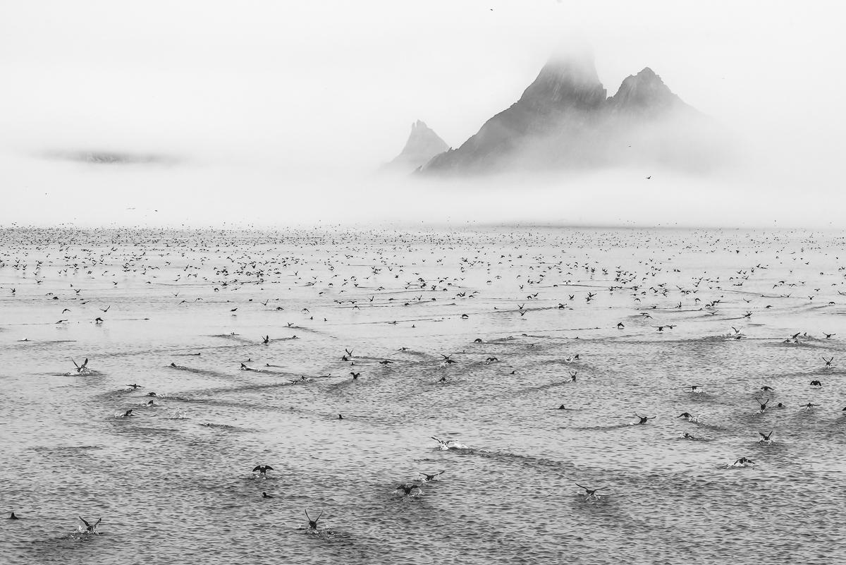 Охотское море - Ямские острова (7)