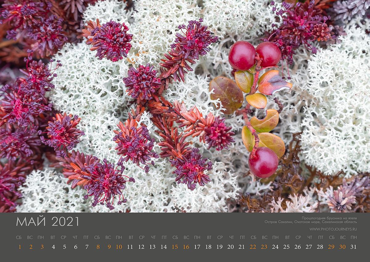Календарь 2021-6_1200