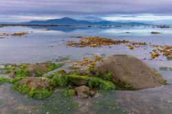 19. Silence of low tide