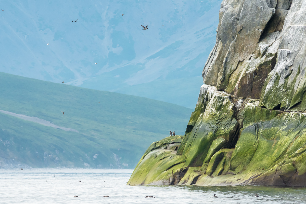 Охотское море, Ямские острова (3)