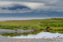 Охотское море - полуостров Кони (2)