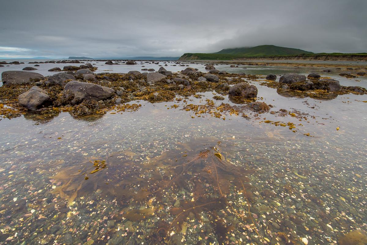 Охотское море - полуостров Кони (4)