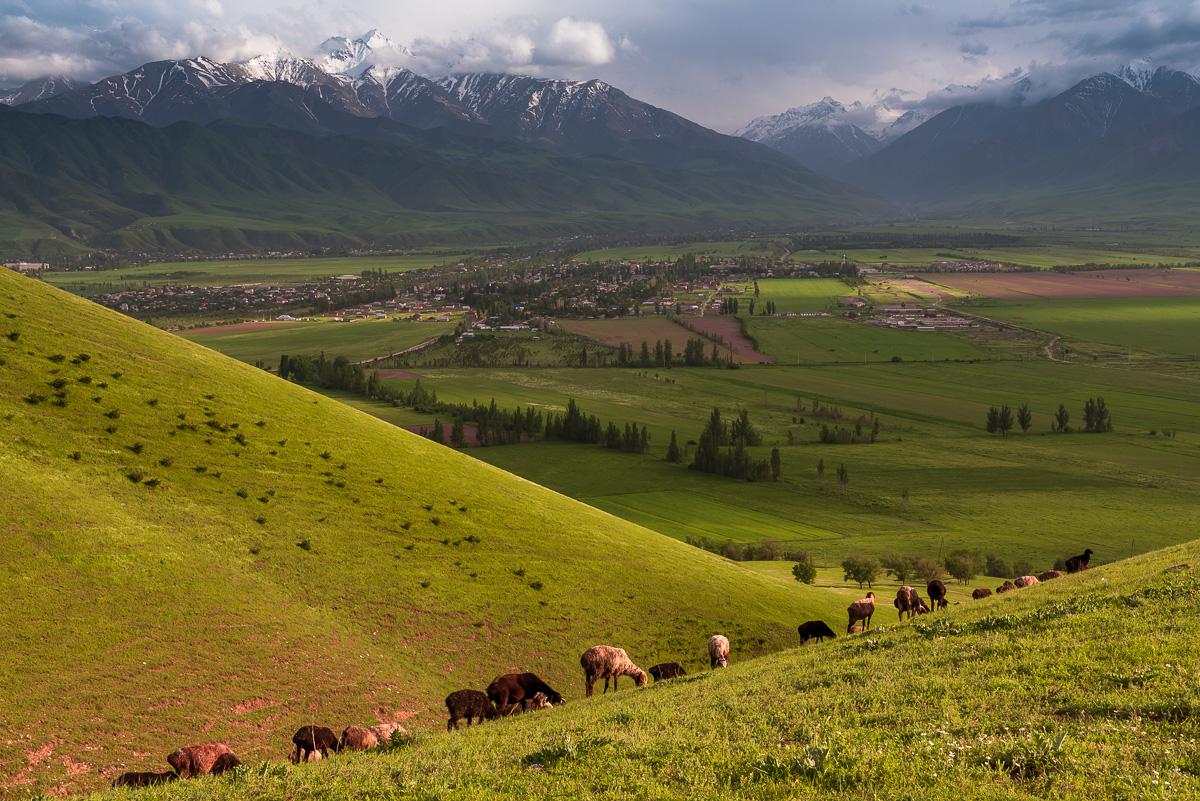 Окрестности Бишкека