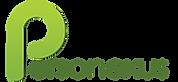 Personexus Logo (no website) Transparent