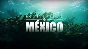 02_ecosistemas.jpg