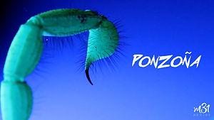2_ponzoña copy.jpg
