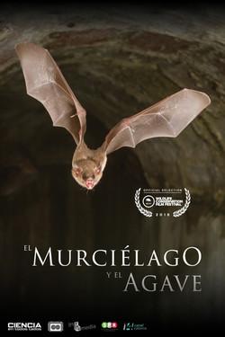 MURCIELAGO_2_FIN