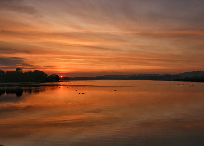 August Dawn