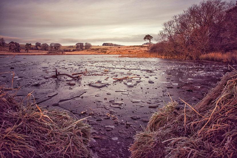 Frozen Priddy Pool