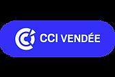 logo-CCI2019.png