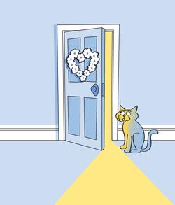 Honeymoon Cat