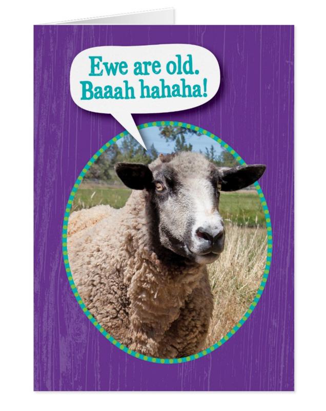 Sheep Shot Birthday Card