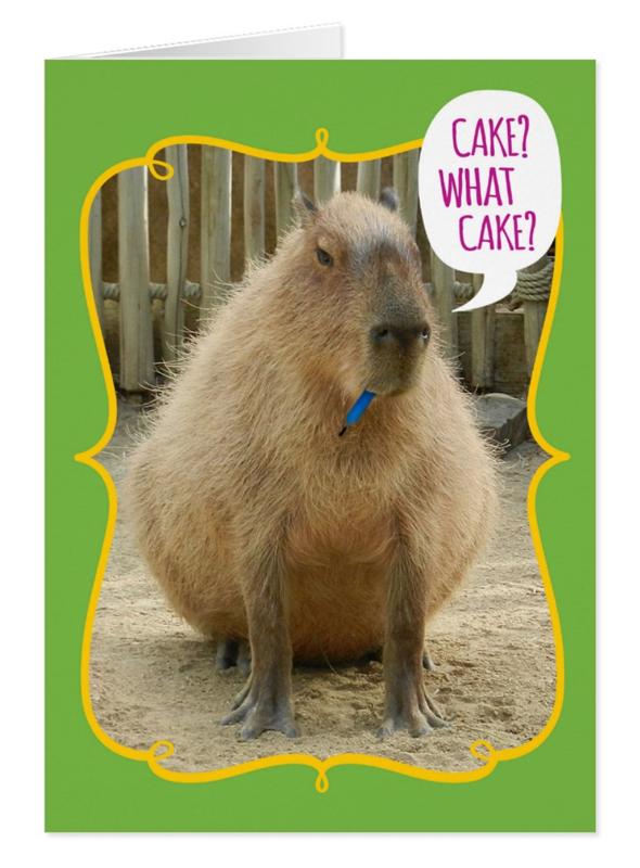 Funny Capybara Card