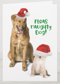 Funny greeting card for the holidays