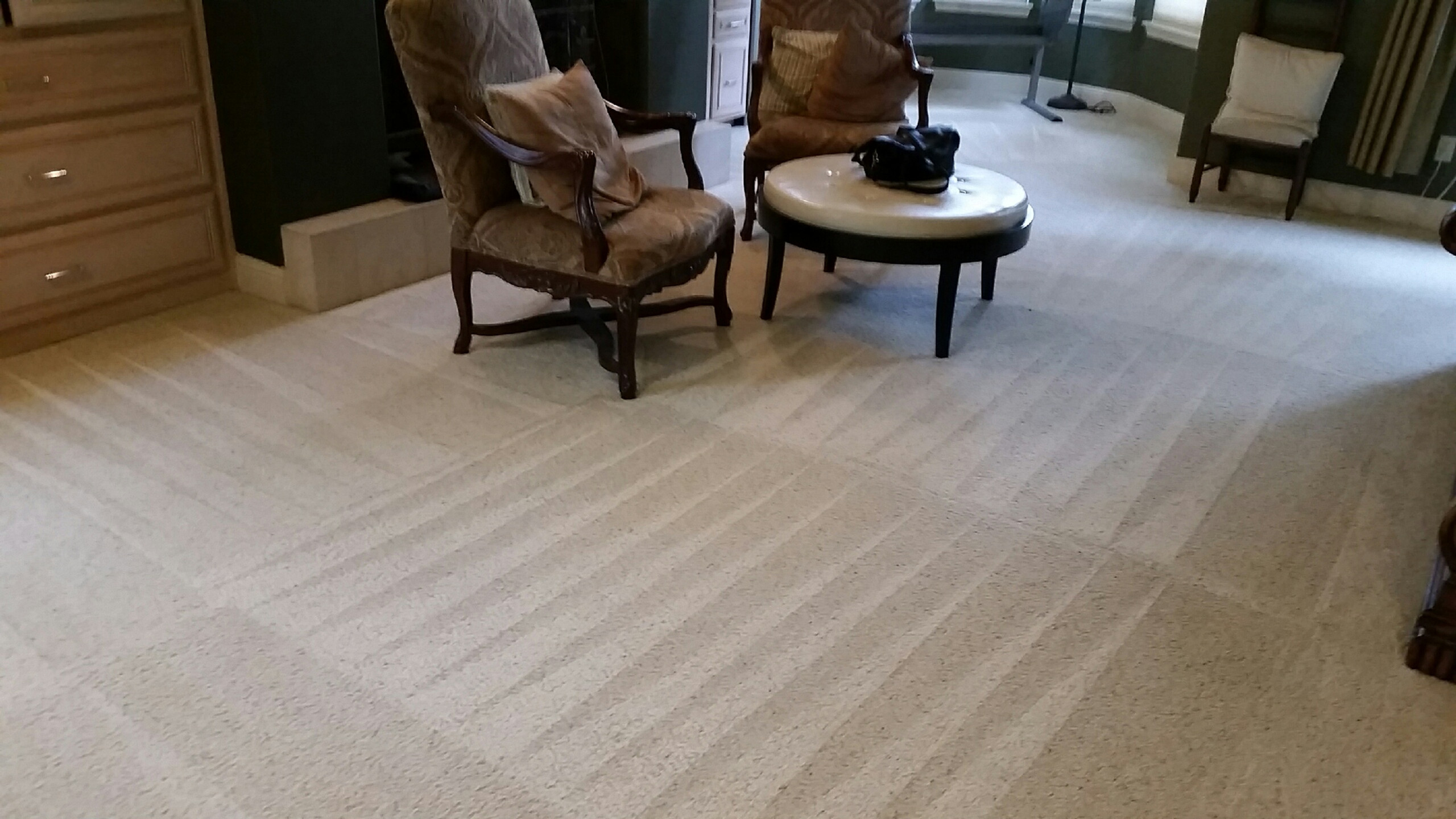 Carpet Cleaning - Level One