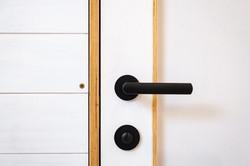 Dveře B Visi Překližka